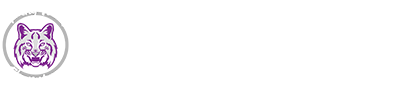 "Spring Valley Logo with ""Home of the Wildcats"""